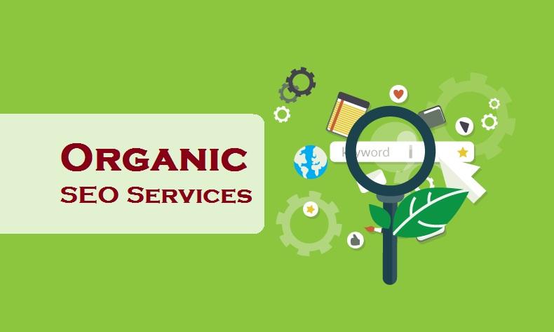 jasa seo bogor organik